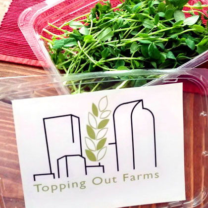 Package of Topping out Farm microgreens