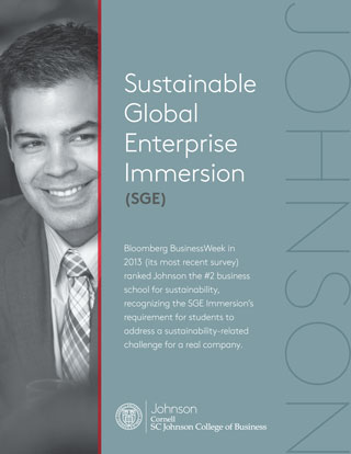 Sustainable Global Enterprise Immersion