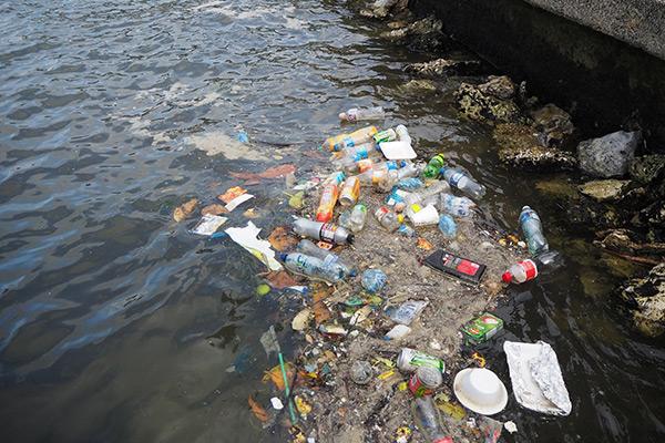 photo of San Pedro, Ambergris Caye, Belize, June 16, 2019: Single-use plastic in the sea