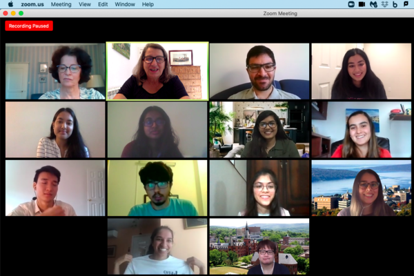 EMI interns and staff in a Zoom meeting