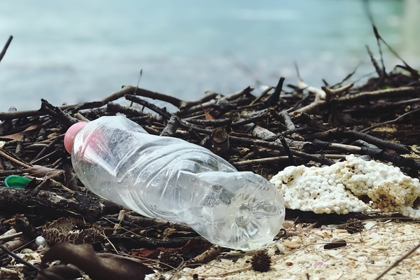 An empty plastic water bottle rests on the bank of a body of water